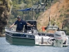 MWfishing